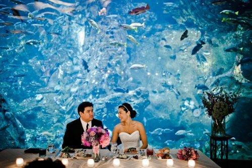 Dale Tu Photography Christopher Flowers Seattle Wedding Seattle Aquarium Reception Centerpiece