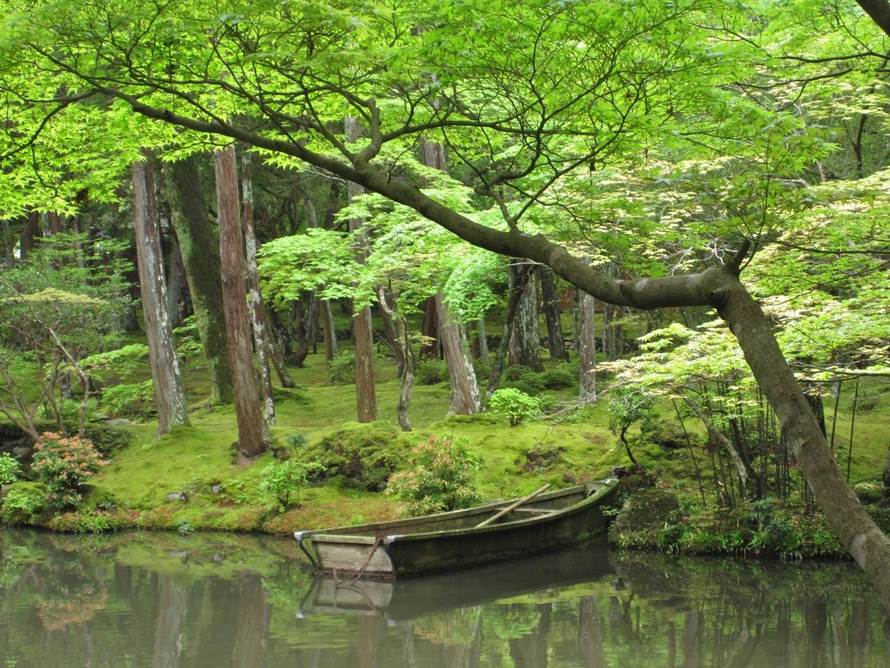 301 moved permanently - Moosgarten kyoto ...