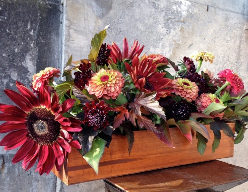 centerpiece fall wood box sunflower zinnia scabiosa foliage christopher flowers seattle