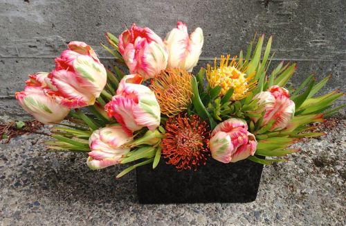 tulips peach local organic christopher flowers seattle floral design leucospermum leucadendron