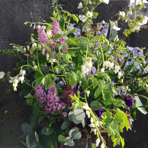 christopher flowers seattle purple lavender white green local organic floral design