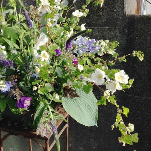 christopher flowers seattle purple lavender white green blue local organic floral design