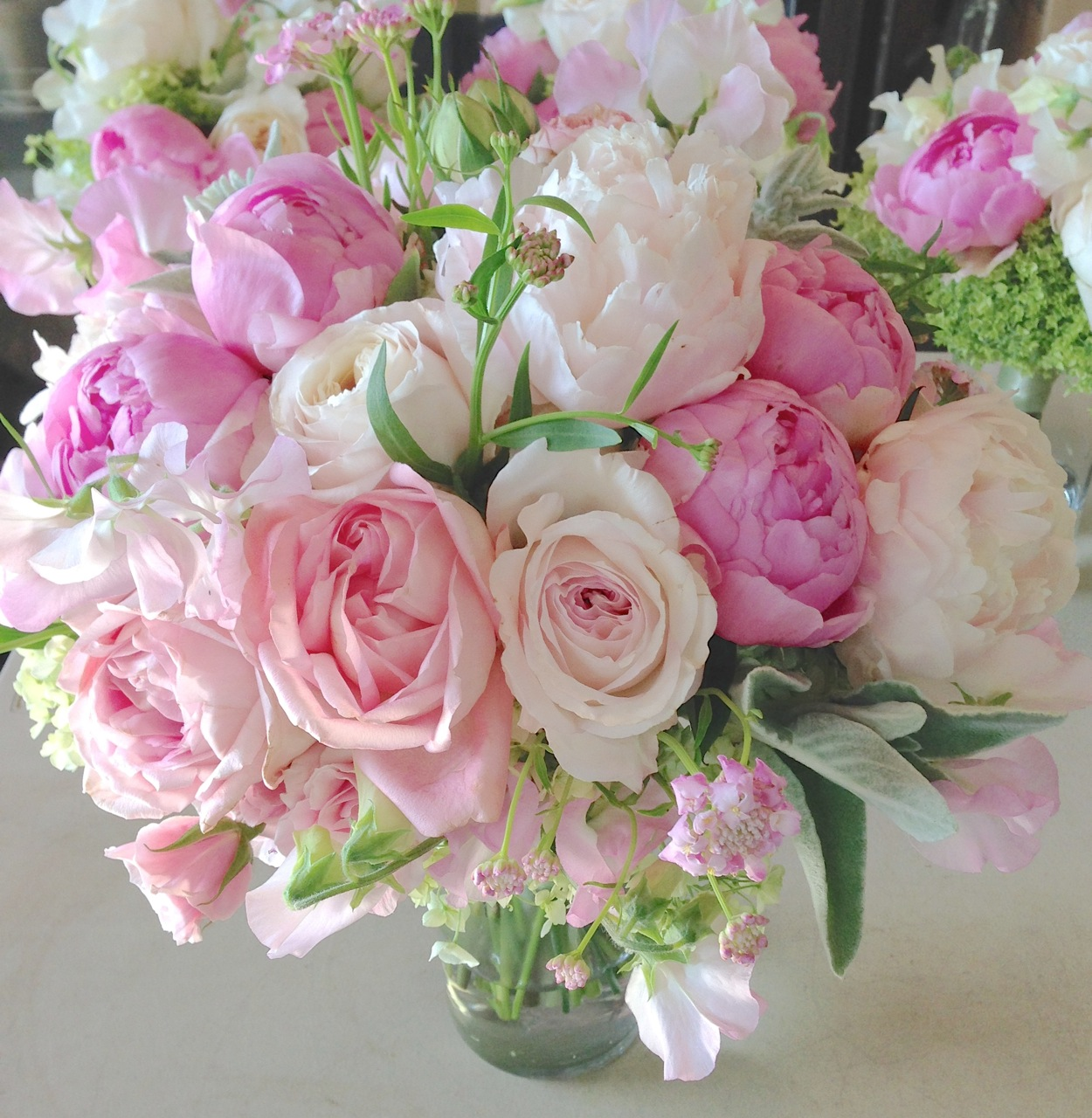 peas and peonies recipe for fragrance peonies garden roses amp sweet peas