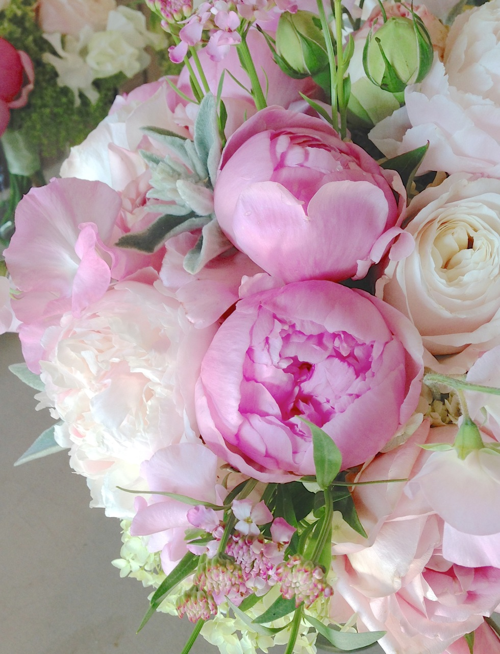 christopher flowers seattle wedding bouquet blush pink ivory peony garden rose sweet pea hydrangea green ivory - Garden Rose And Peony