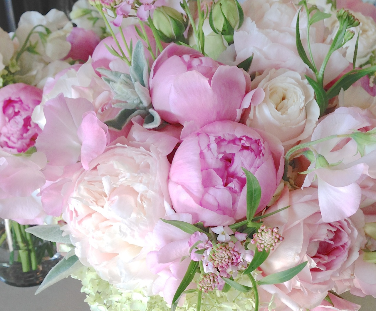 christopher flowers seattle bouquet pink blush peony garden rose sweet pea hydrangea green ivory local organic - Garden Rose And Hydrangea Bouquet