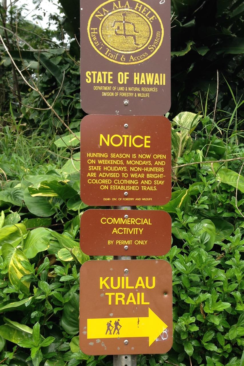 Hawaii | Christopher Knits