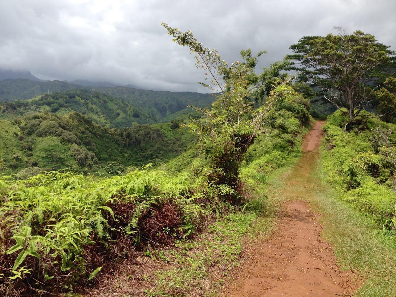 Ridge Hike Seattle Seattle Hawaii Kauai Hike